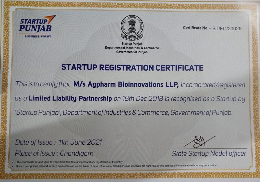 punjab-statrtup-certificate